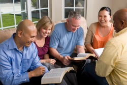 Beginners Bible Study
